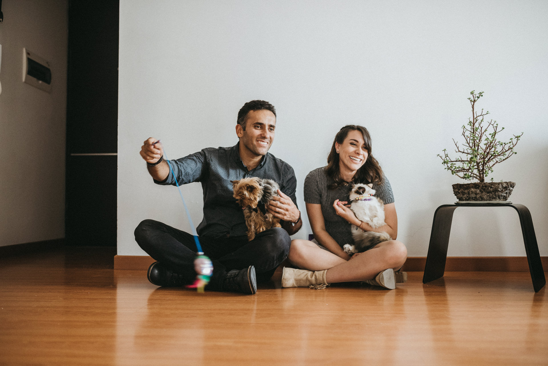pet session colombia